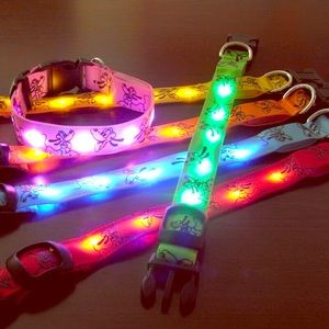 Other - Light Up Pluto Dog Collars🐶